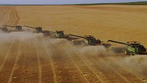 机械化麦田收割(科罗拉多,美国)