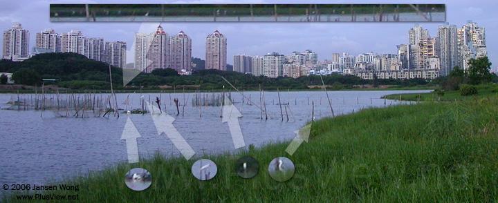 从南岸白石路桥西侧看华侨城湿地北湖东部