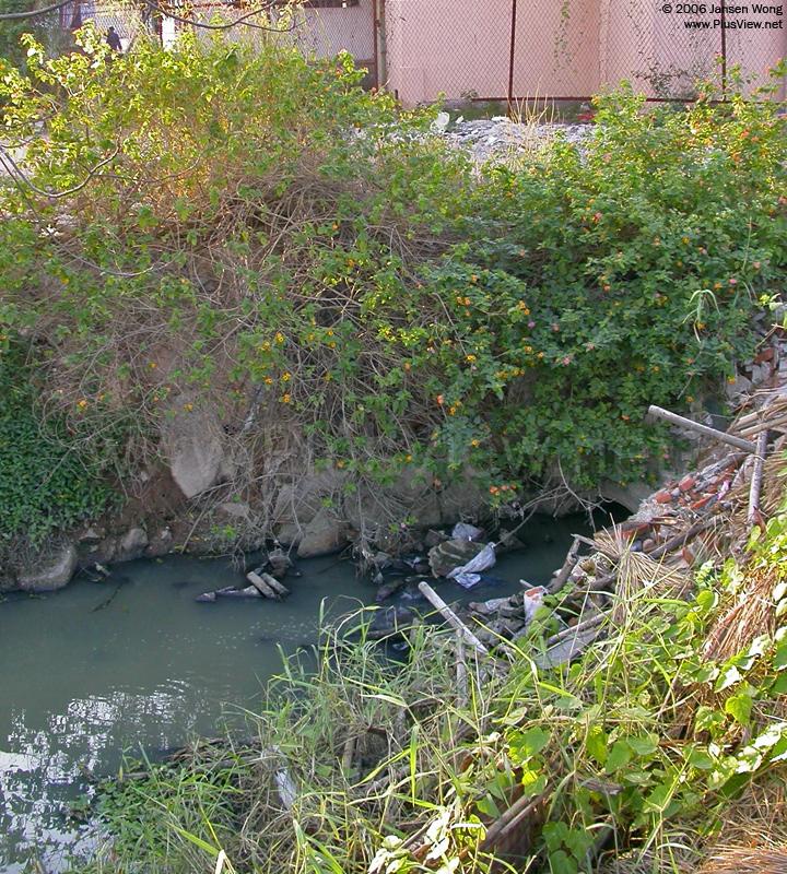 华侨城湿地北湖北岸东端,民俗文化村南面的一个排污口