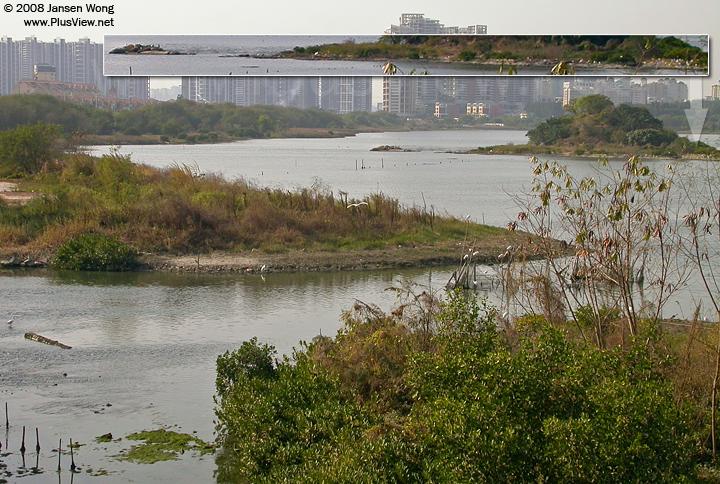 从白石路桥上看华侨城湿地北湖西侧南面的一部分