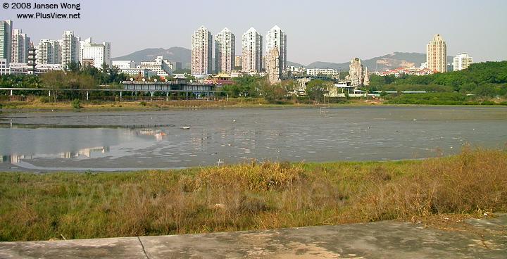 华侨城湿地北湖东边很大一块已经基本没水