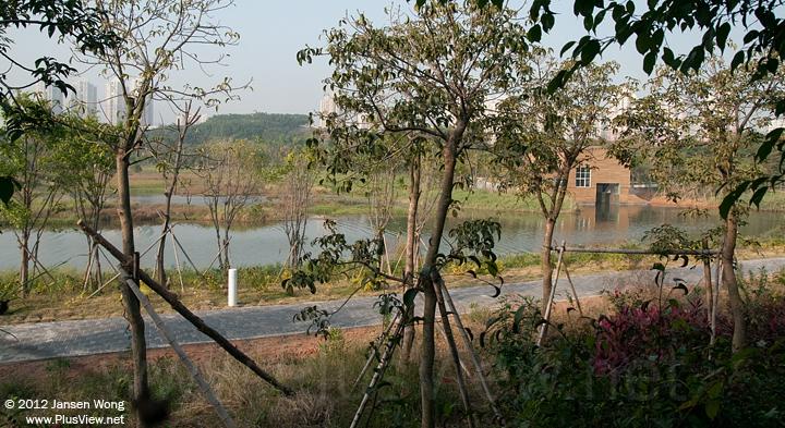 华侨城湿地北湖的东南端