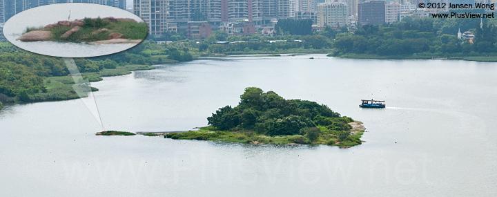 游船围绕华侨城湿地北湖湖心岛航行