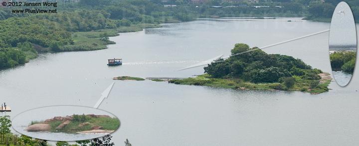 华侨城湿地北湖游船把白鹭惊吓飞走