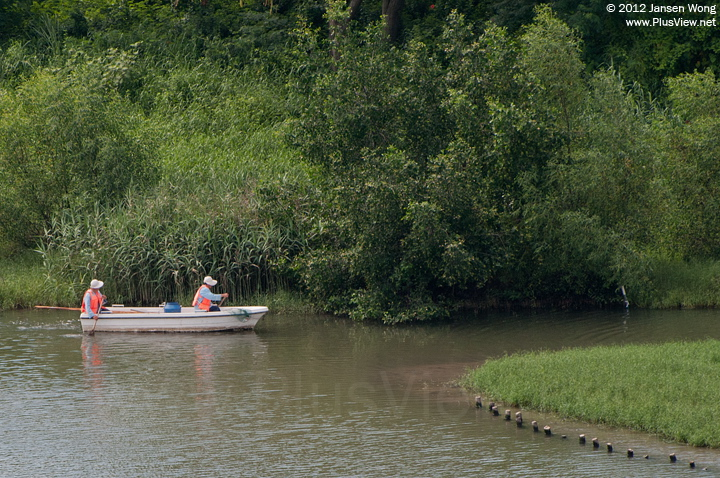 华侨城湿地北湖的工作船
